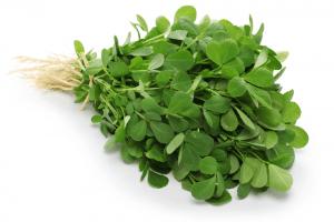 Fenugreek leaves helpful in anaemia