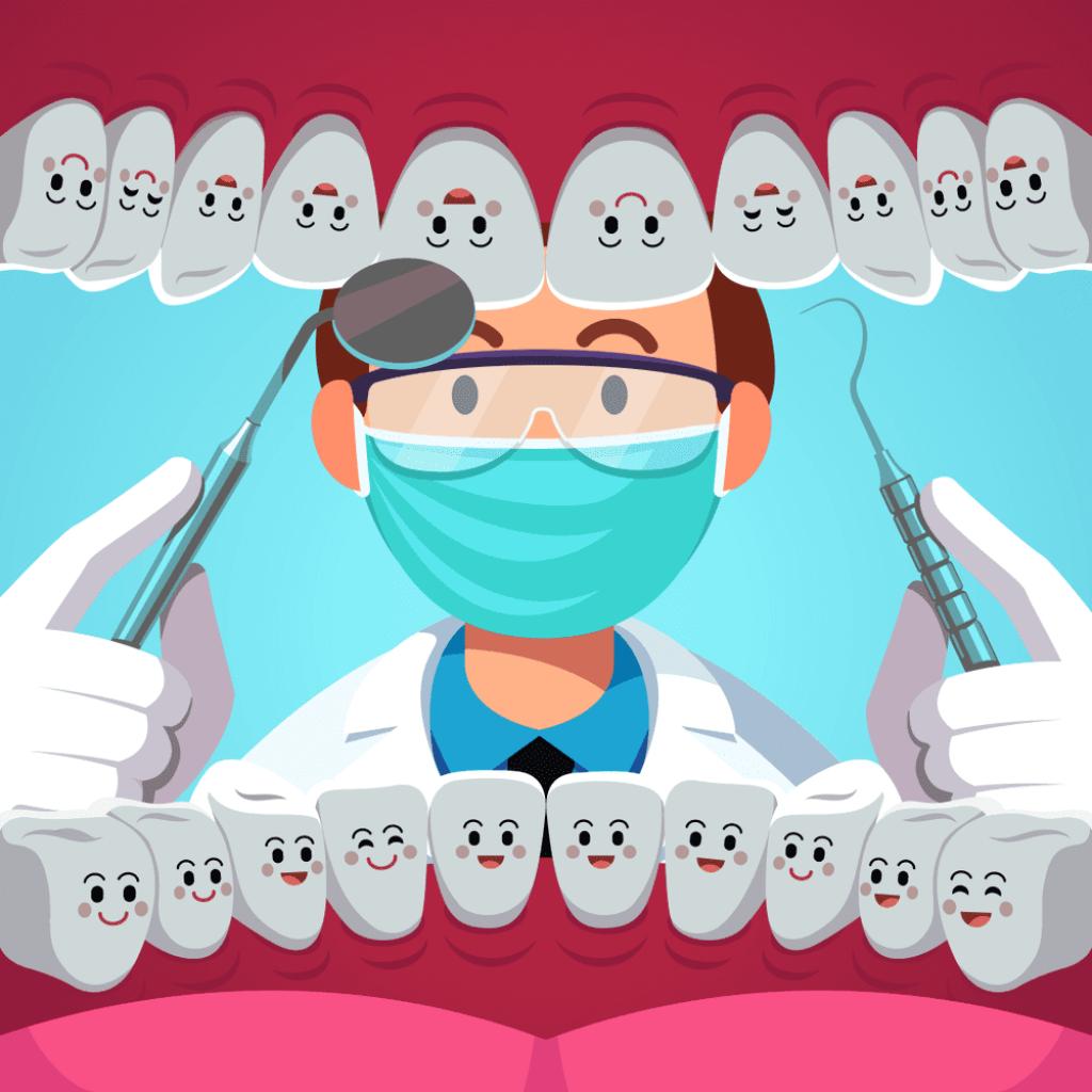 Teeth adults have